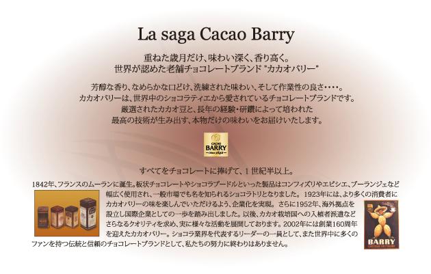 1842年、パリ近郊のムーランで創業を開始したカカオバリー社は160年以上にも渡り、世界中のショコラティエ(チョコレート職人)とパティシエ(菓子職人)と共に、チョコレートに対する情熱を育んできました。高品質のカカオ豆から生まれるカカオバリー社の製品は、世界中に多くのファンを持つ伝統と信頼のチョコレートブランドです。